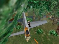 Ein abgestürztes Flugzeugwrack