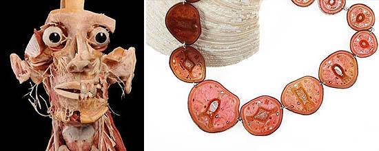 Plastinierte Köpfe oder Schmuck aus Tierscheiben: In seinem Webshop verkauft Gunther Hagen allerlei gruselige Gegenstände. (Fotos: http://www.plastination-products.com)