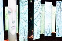 Auf der MediaNight der HdM sind multimediale Installationen regelmäßig zu sehen