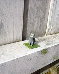 Auch Haustiere können dreidimensional dargestellt werden (© Scanotec)