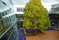 ... und die Hochschule Reutlingen sind Projektpartner (Fotos: Hochschulen Aalen und Reutlingen)