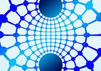 Bakterien könnten in Zukunft als Datenspeicher eingesetzt werden (Foto: Pixabay)